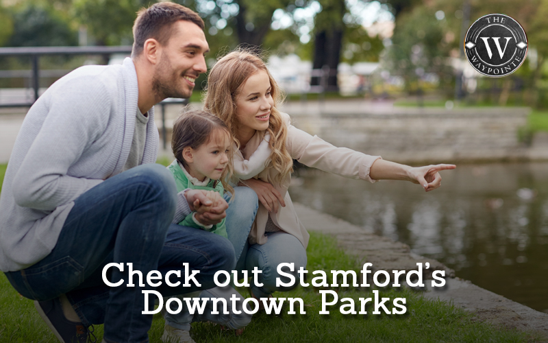 Check out Stamford's Downtown Parks